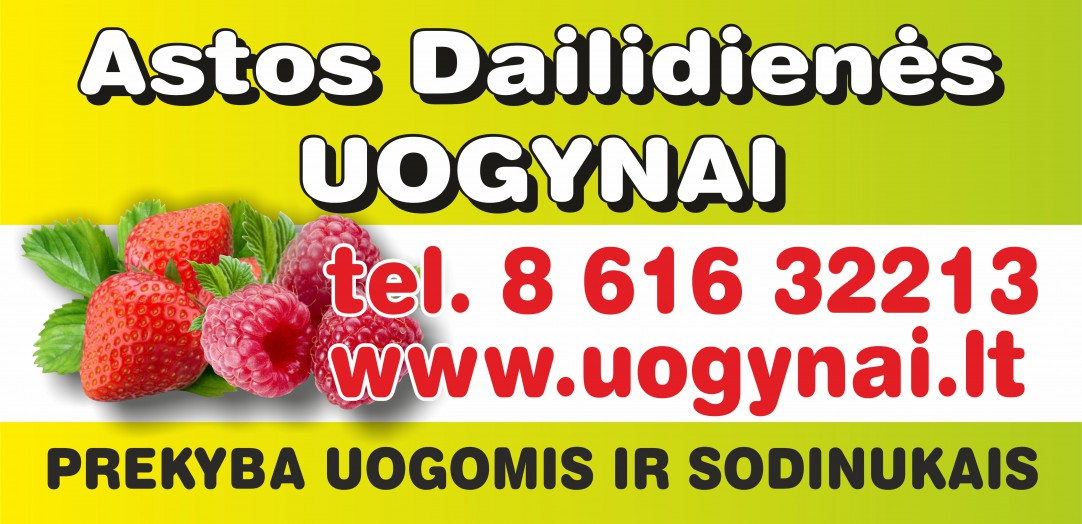 Astos Dailidienes uogynai